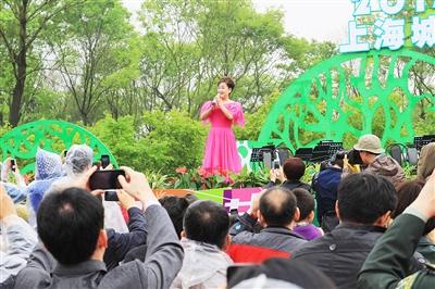 森林唱歌比赛分享展示